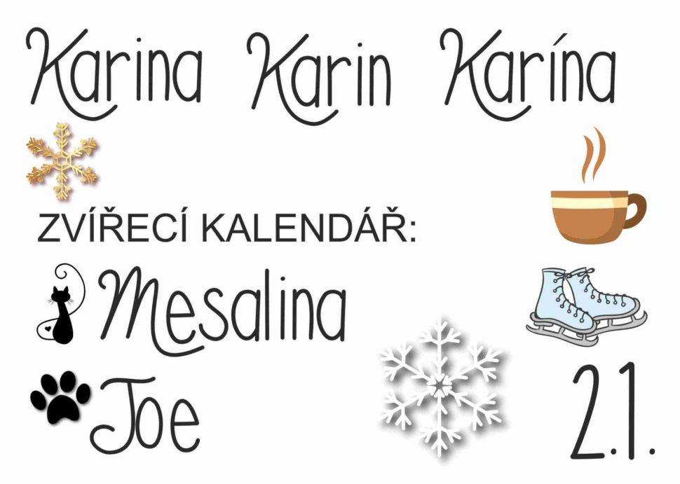 Karina, Karin,Karína